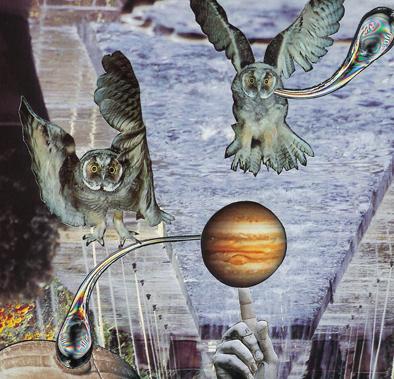 owls-for-blog.jpg
