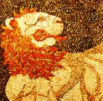 lion-arena